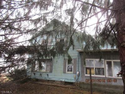 Single Family Home For Sale: 8348 State Route 224