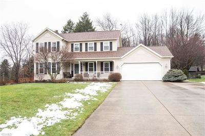 Medina County Single Family Home For Sale: 565 Barrenwood Dr