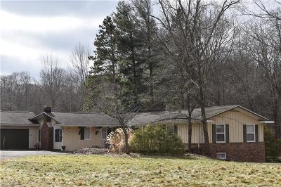 Single Family Home For Sale: 31980 Jackson Road