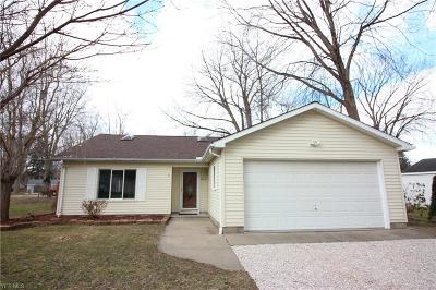 Madison Single Family Home For Sale: 1456 Lake View Ave