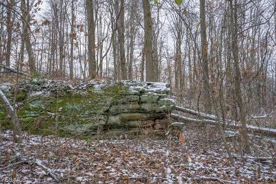 Muskingum County Residential Lots & Land For Sale: Black Run Rd