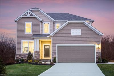 Summit County Single Family Home For Sale: 1923 Baker Ln