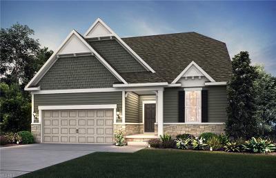 Strongsville Single Family Home For Sale: 13149 Prescott Ln