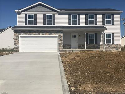 Medina County Single Family Home For Sale: 514 Rolling Hills Dr