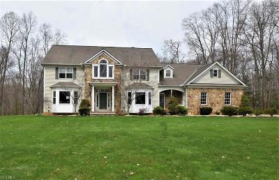 Chagrin Falls Single Family Home For Sale: 8682 Chase Dr