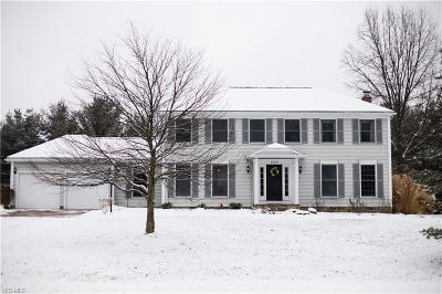 Summit County Single Family Home For Sale: 7435 West Firelands Dr