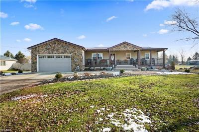 Medina County Single Family Home For Sale: 4215 Beat Rd