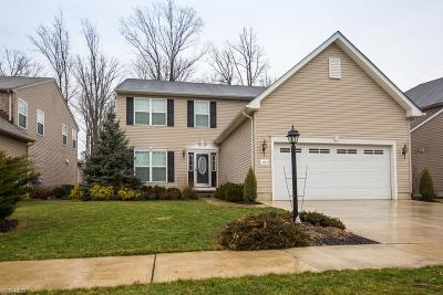 Summit County Single Family Home For Sale: 3723 Firethorn Dr