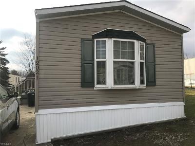 Chardon Single Family Home For Sale: 12021 Nicki Ln