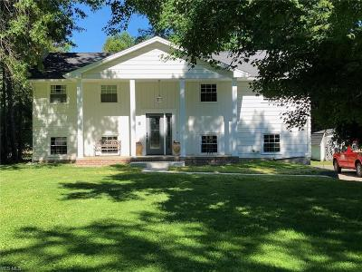 Canfield Single Family Home For Sale: 4053 Pleasant Valley Ln