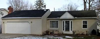 Lorain County Single Family Home For Sale: 723 Woodside Ave South