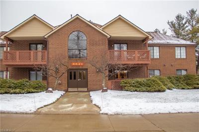 Broadview Heights Condo/Townhouse For Sale: 8621 Scenicview Dr #I203