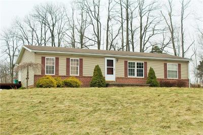 Columbiana County Single Family Home For Sale: 950 Georgetown Damascus Rd