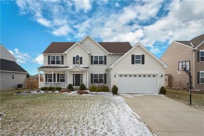 North Ridgeville Single Family Home For Sale: 37771 Elva Ln