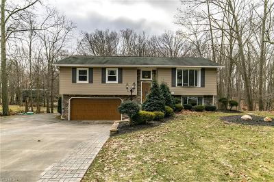Columbia Station Single Family Home For Sale: 24293 Forestview Dr