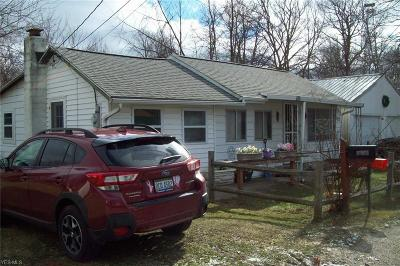 Painesville OH Single Family Home For Sale: $34,900
