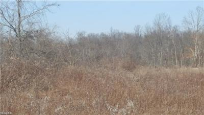 Guernsey County Residential Lots & Land For Sale: 17065 Easton Rd