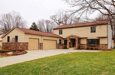 Chagrin Falls Single Family Home For Sale: 8330 Stoney Brook Dr