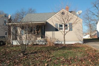 Struthers Single Family Home For Sale: 59 West Lewis St