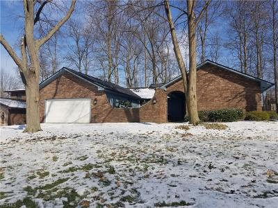 Strongsville Single Family Home For Sale: 17207 Misty Lake Dr