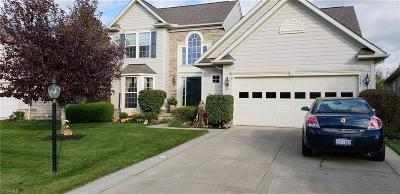North Ridgeville Single Family Home For Sale: 5741 Overlook Way