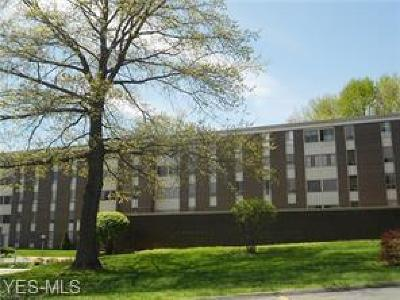 Summit County Condo/Townhouse For Sale: 3066 Kent Rd #412B