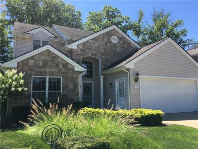 Single Family Home For Sale: 310 Cobblestone Dr