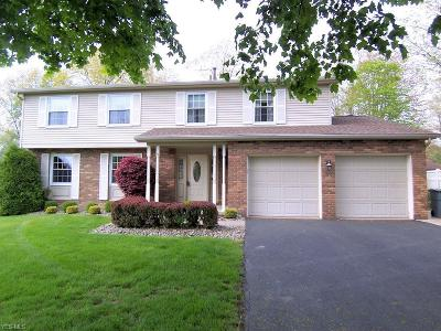 Canfield Single Family Home For Sale: 6860 Slippery Rock Dr