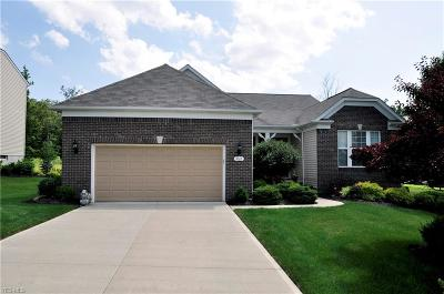 Strongsville Single Family Home For Sale: 9565 North Bexley Dr