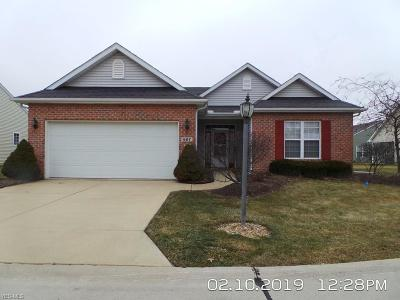 Elyria Condo/Townhouse For Sale: 607 Heather Woods Dr