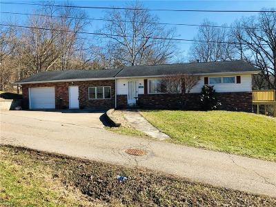 Perry County Single Family Home For Sale: 138 11th St