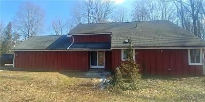 Columbia Station Single Family Home For Sale: 19351 Station Rd