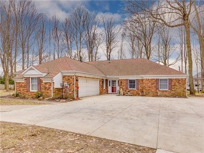 Summit County Single Family Home For Sale: 4690 Young Rd
