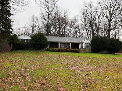 Canfield Single Family Home For Sale: 7237 Fairground Blvd