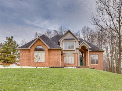Summit County Single Family Home For Sale: 2058 Forest Edge Dr
