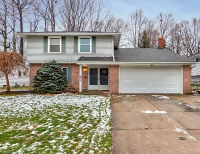 Mayfield Heights Single Family Home For Sale: 6776 Larchmont Dr