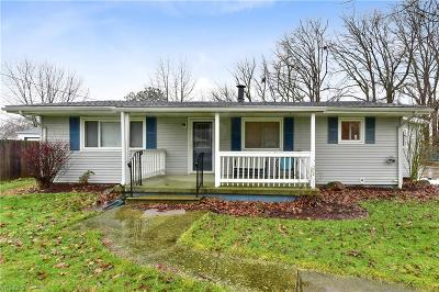 North Ridgeville Single Family Home For Sale: 6110 Olive Ave