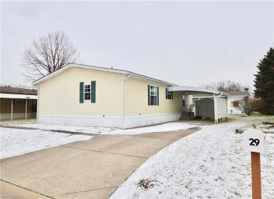 Single Family Home For Sale: 29 Lees Ln