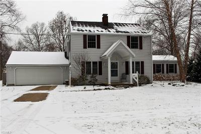 Lorain County Single Family Home For Sale: 172 Curtis Dr