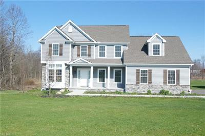Chagrin Falls Single Family Home For Sale: 9780 Horseshoe Dr