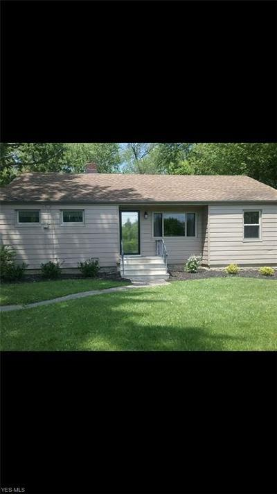Lorain County Single Family Home For Sale: 41294 Schadden Rd