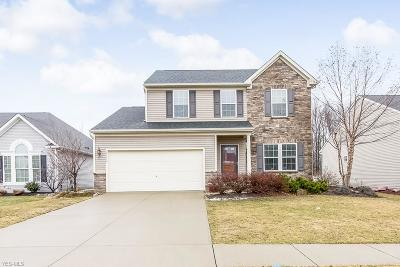 North Ridgeville Single Family Home For Sale: 37134 Tail Feather Dr