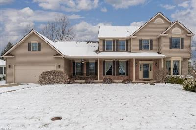 Lorain County Single Family Home For Sale: 604 Parkside Dr