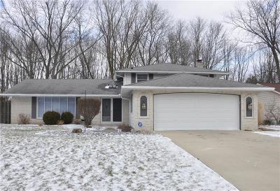 Strongsville Single Family Home For Sale: 17076 Hunting Meadows Dr