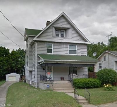 Youngstown Single Family Home For Sale: 240 Lafayette St
