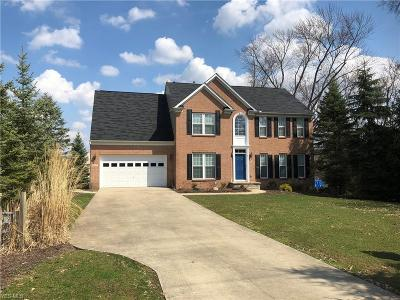 North Royalton Single Family Home For Sale: 10613 Abbey Rd