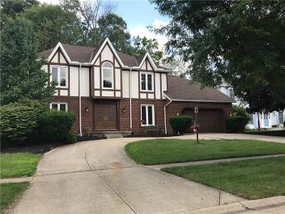 Strongsville Single Family Home For Sale: 18903 Heritage Trl