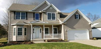 Summit County Single Family Home For Sale: 4858 Pebblehurst Dr