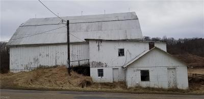 Muskingum County Farm & Ranch For Sale: Lower Bloomfield Rd