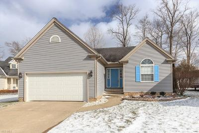 Chardon Single Family Home For Sale: 122 Cedar Glen